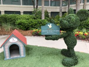 Dog house and Mickey topiary